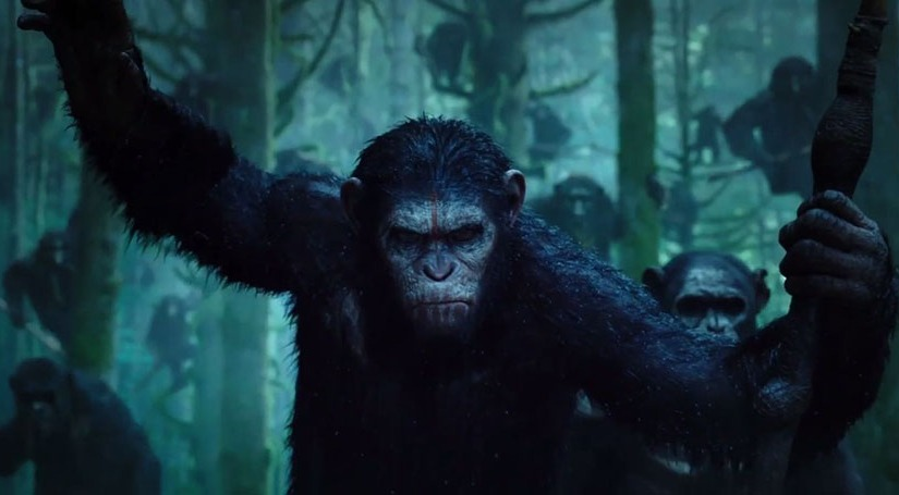 Dawn Of The Planet Of The Apes – Courts